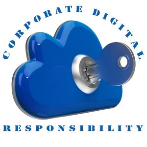 SAVAS CDR and Data Security